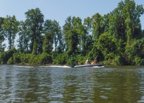 Savannah River Paddling-027