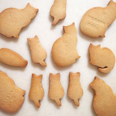 * 今日もクッキー。 形はにゃんこ・お味はきなこ。 米粉を使って、 サクホロ食感にしました。 #クッキー #焼きたて #手づくりお菓子 #手づくりおやつ