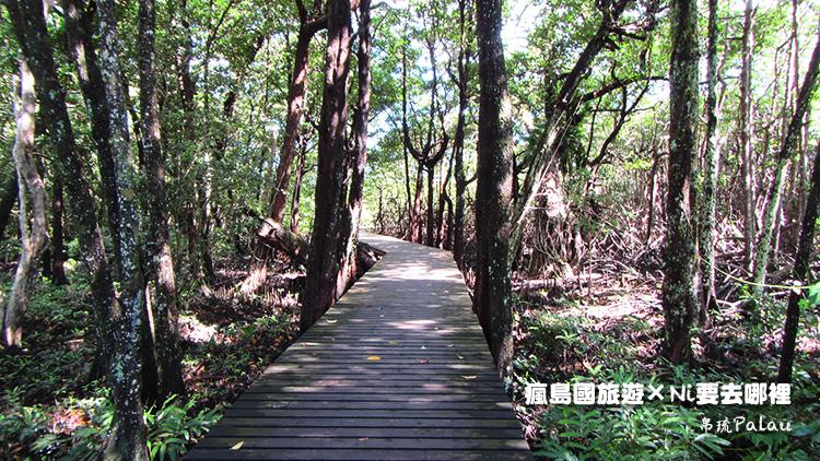 92日暉國際度假村紅樹林步道