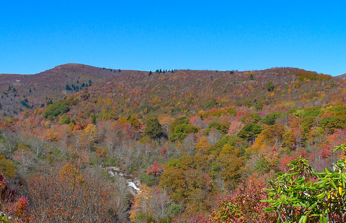 Blue Ridge Parkway in Autumn-45