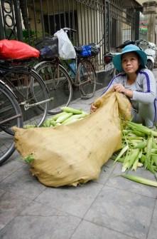 Uncover the Corn