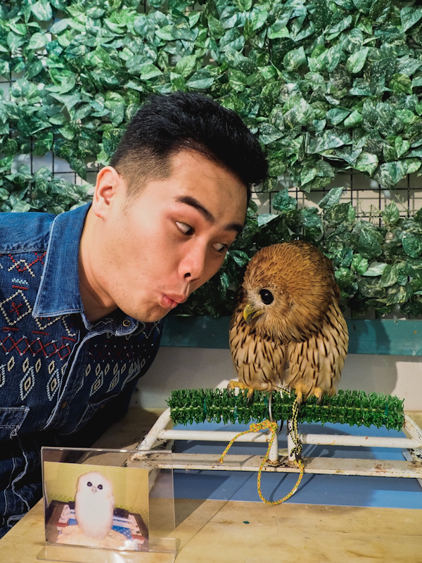 Lucky-Owl-Cafe-Osaka-15