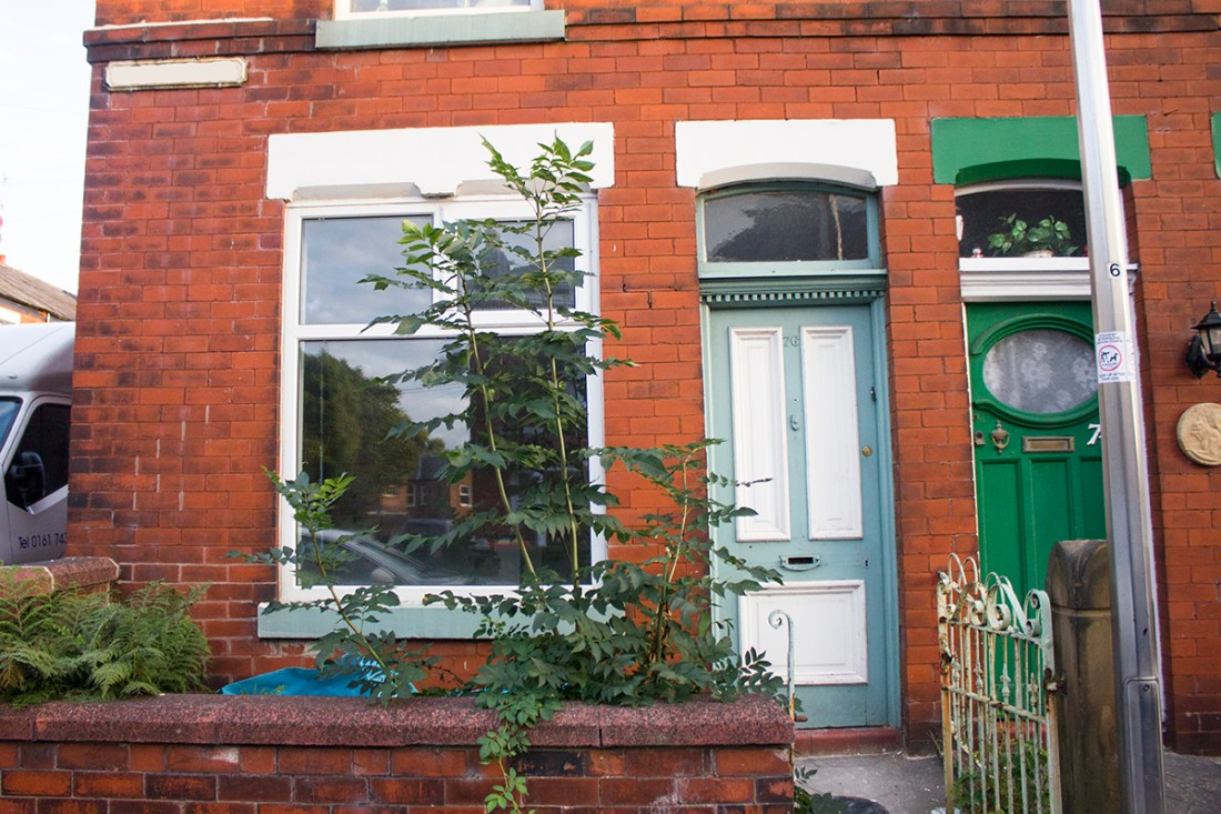 house-renovation-project-blog
