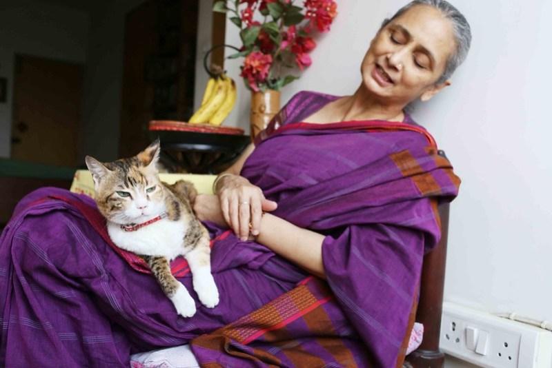Mission Delhi - Sufi the Cat, Mehrauli
