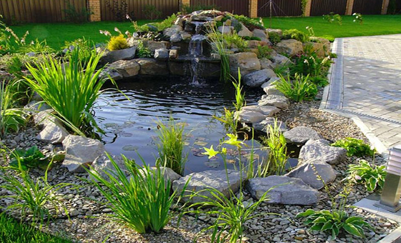 Top 50 Garden Pond Designs That Will Rock Your World