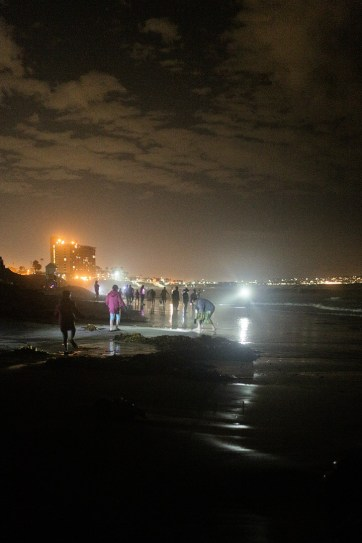 Grunion Run (25 Free Things to Do in San Diego).