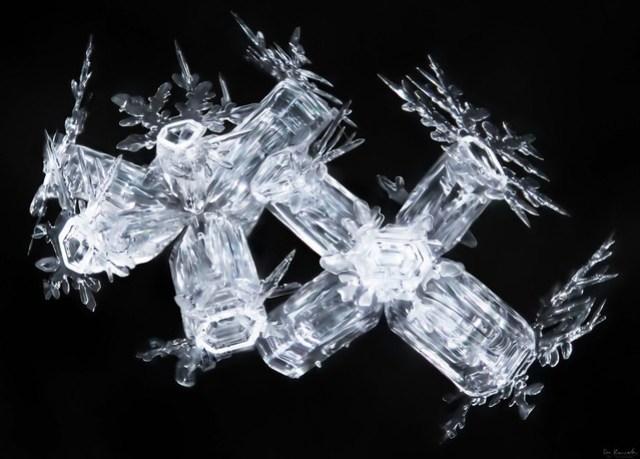 Snowflake-a-day#1, snowflake macro photo by Don Komarechka