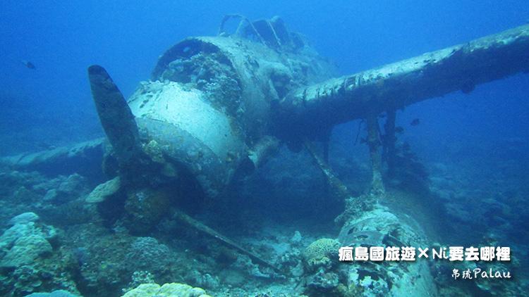 27帛琉戰機正面