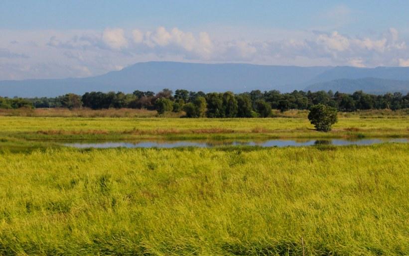Landskabet på vejen til Cambodja