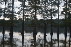 053 Chisholm Lake
