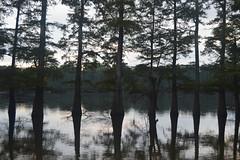 053 Chisholm Lake