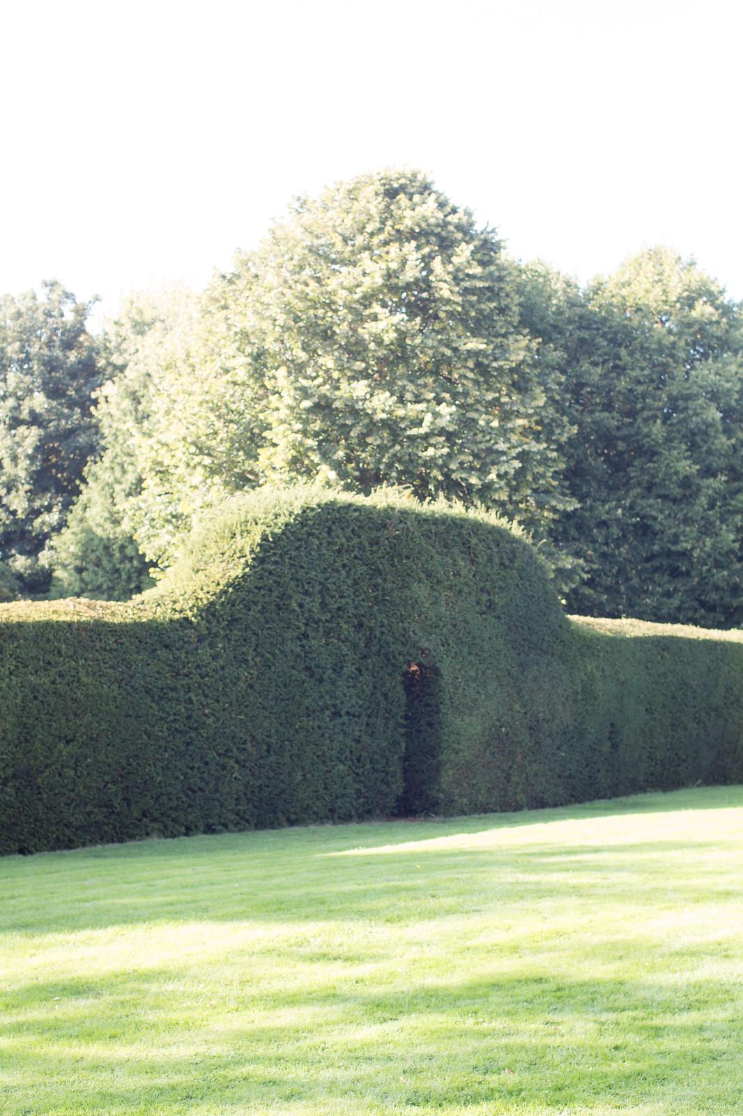 1 Alveston pastures farm maze Entrance