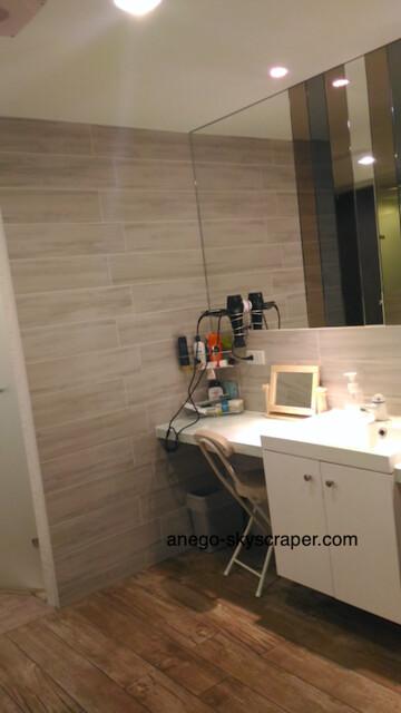 3Sの洗面所