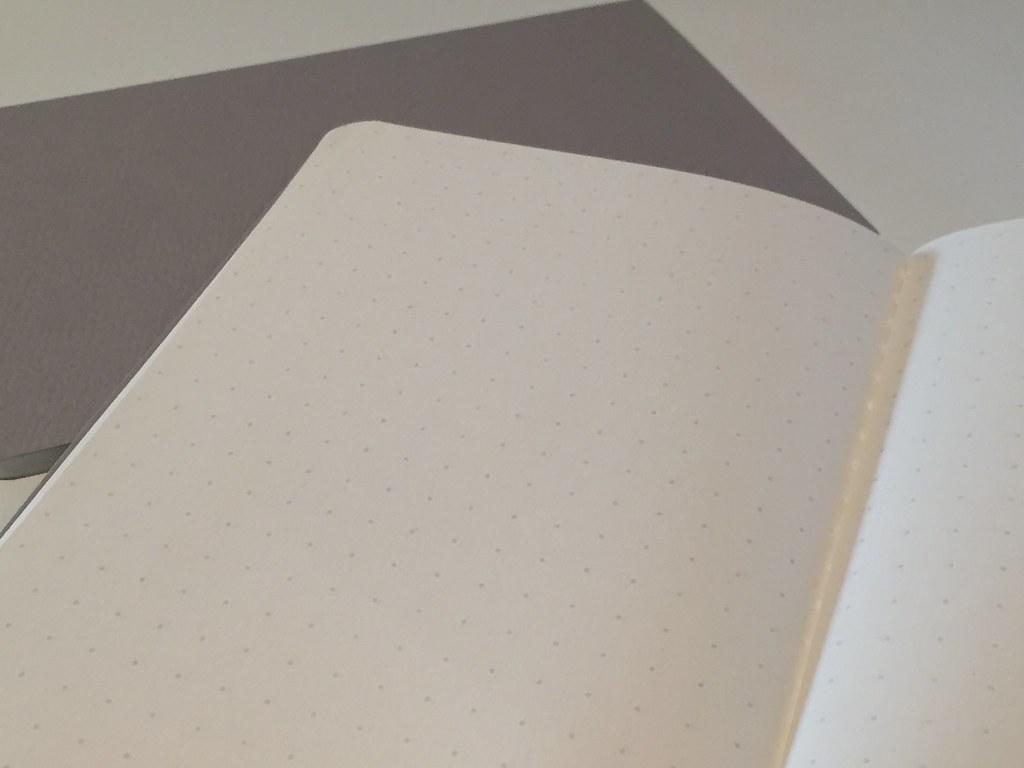 BARON FIG apprentice notebook