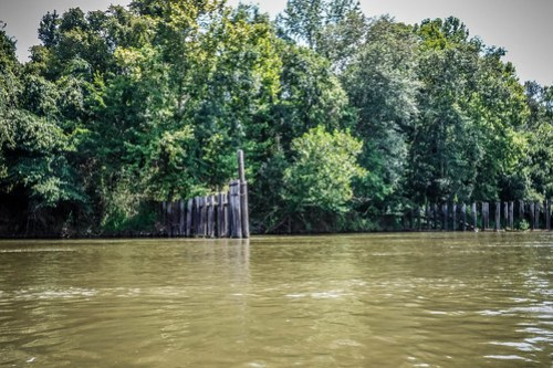 Savannah River Paddling-077