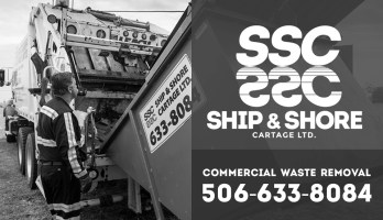 Ship and Shore Bus Ads