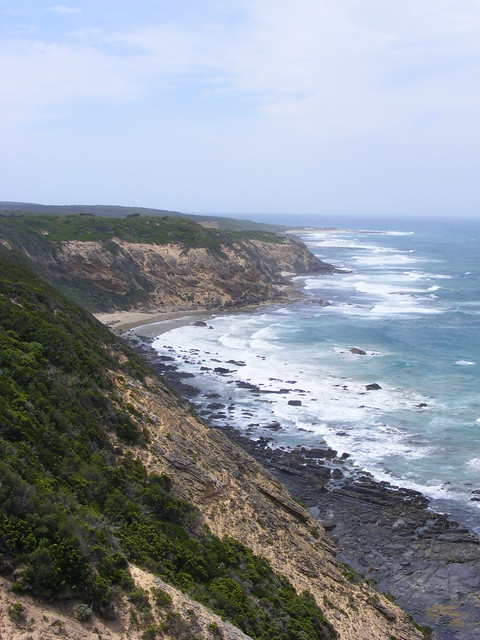 Picture from Cape Otway, Australia