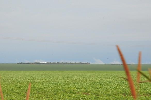 Para transformar terras devolutas em fazendas, o processo mais comum é por meio da grilagem - Créditos: Paulo Barros