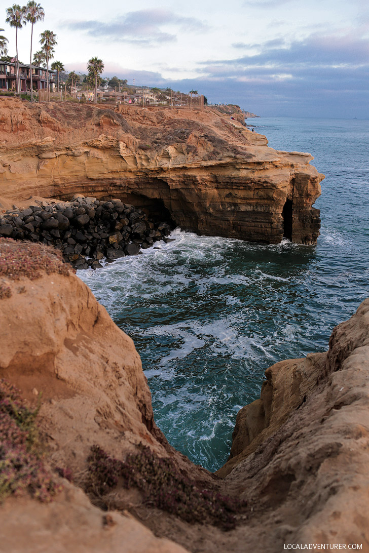 Sunset Cliffs Natural Park (25 Free Things to Do in San Diego).