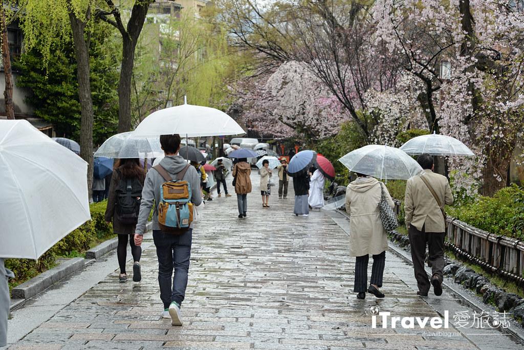 京都赏樱景点 祇园白川 (29)