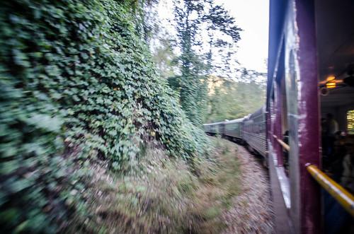 Great Smoky Mountains Railroad-34