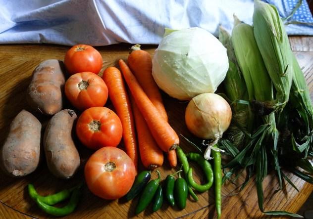 Homestead Creamery Week 21 Vegetable Delivery