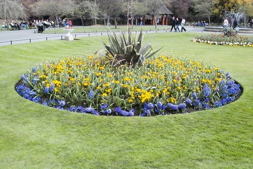 Bed of flowers, Stephens Green, Dublin, Ireland by infomatique