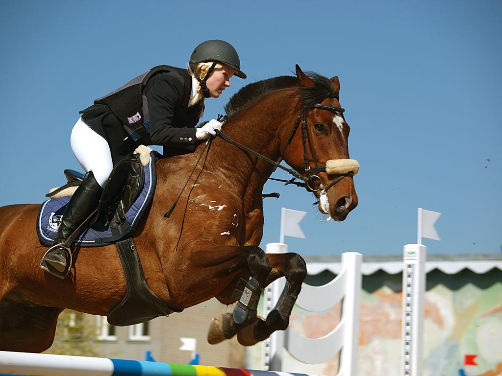 Imagen gratis de una mujer saltando a caballo