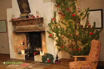 Thatched Cottage Christmas Recital (2)