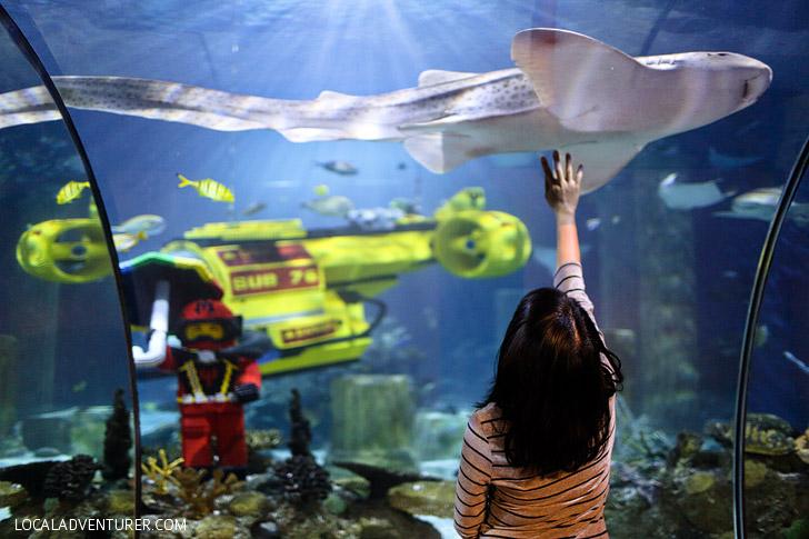 Around The World Tour At Legoland California Resort