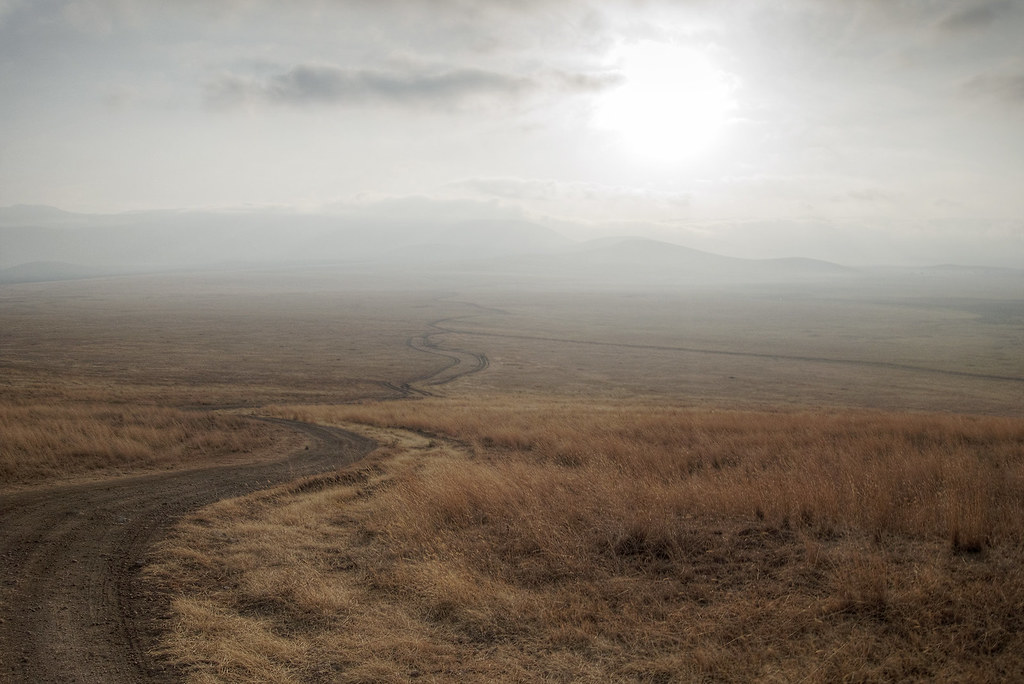 One of the main roads cutting through Ngorongoro Crater