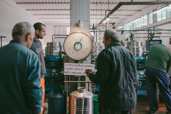 olivenölmühle_JuliaSangNguyen-2