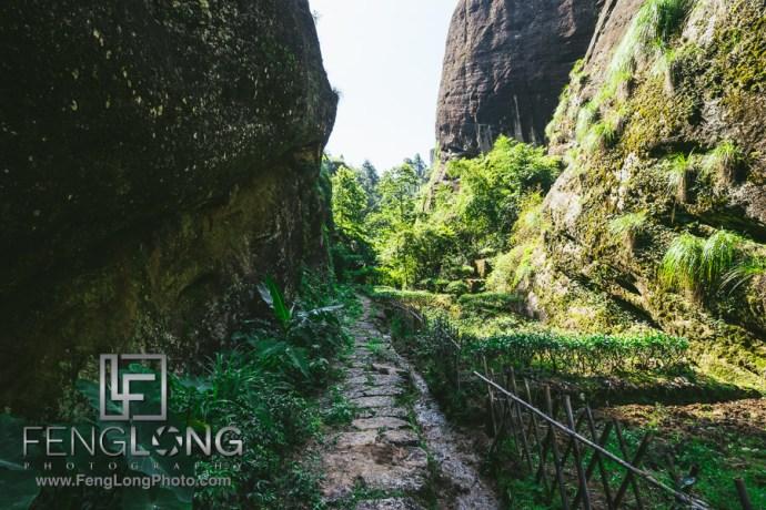 China Trip 2015 | Day 6 | Wuyi Mountain + Tea Hiking