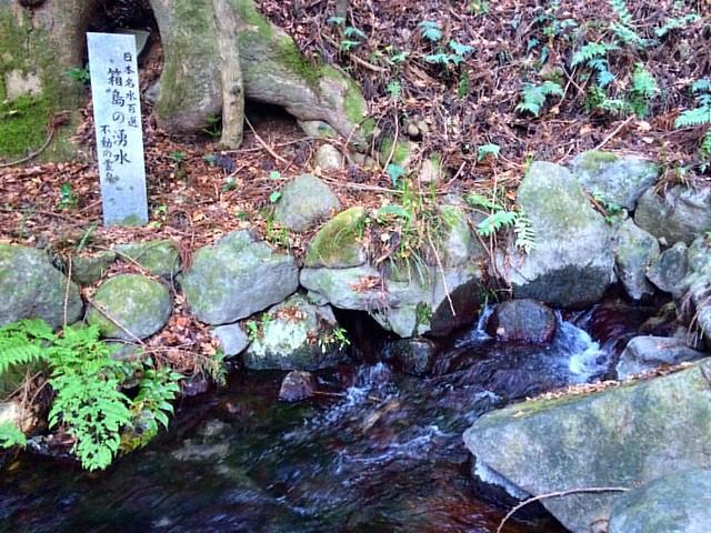 飲み放題٩( ᐛ )و✨  #箱島湧水