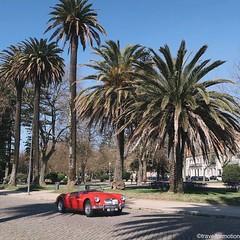 #life in #porto #oporto #porto_ig #visitporto #portugal #loves_porto #portolovers #wanderlust #travel #travelgram #vsco #vscocam #guardiantravelsnaps #guardiancities #citytrip #travelphotography #igers_porto #visitportoandnorth #ig_travel #igersopo #cityb