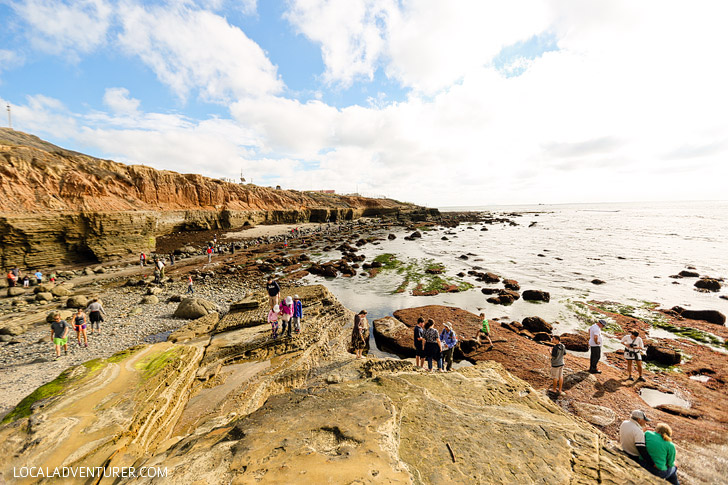 Tide Pooling - Finding Fascinating Sea Life at Cabrillo National Monument San Diego Tide Pools.