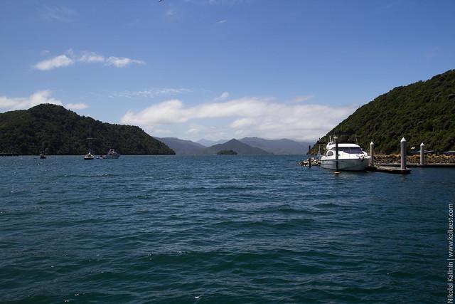 NZ_day10-26