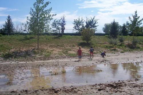 pond play 2