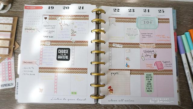 Plan With Me Week 43