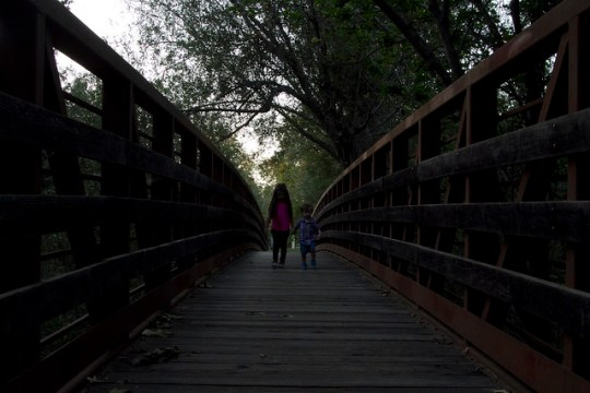 bridge before radlab