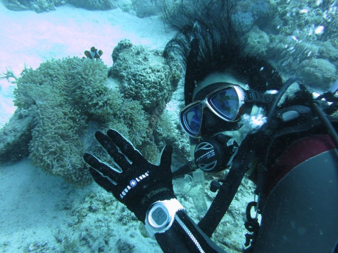 沖縄に行ってきました!・・・去年。今は我慢です。でも潜りた!
