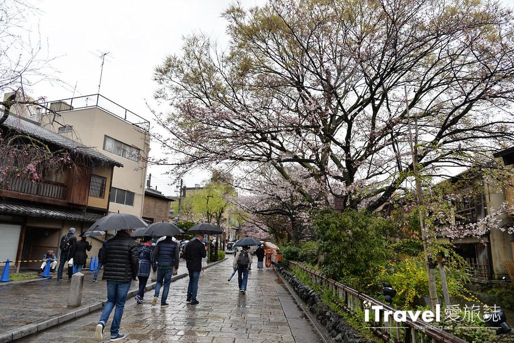 京都赏樱景点 祇园白川 (33)