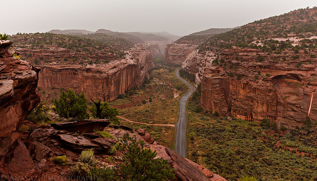 Long Canyon Rain