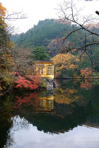 鎌北湖 20151210-DSCF8945_1