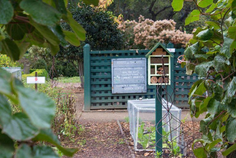11.08. Elizabeth Gamble garden