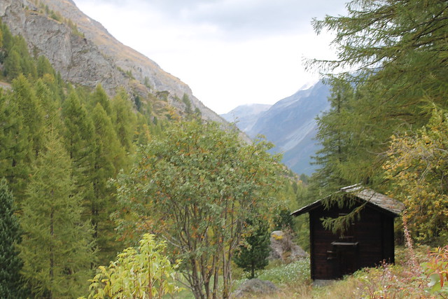 cabin in the woods furi to zermatt