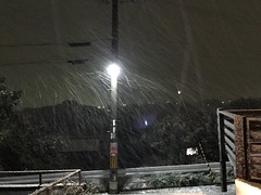 雪が降り始めた
