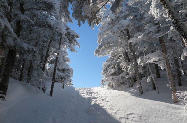 Osceola Trail Summit Call