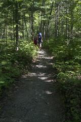 Hemlocks & Hardwoods Hiking trail