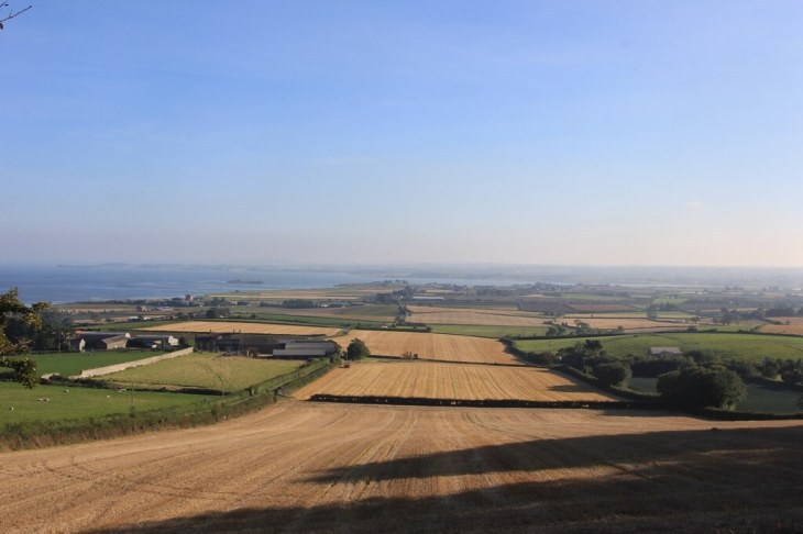 The view from Scrabo Tower